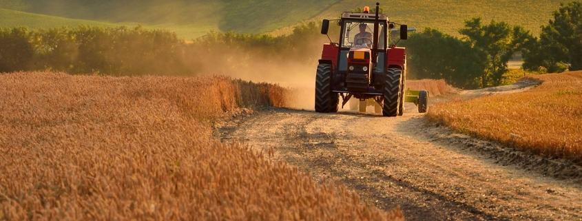 Agri Novatex | Before harvesting